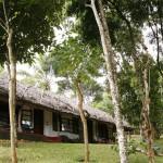 Hotels Thekkady